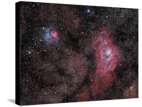 Lagoon Nebula and Trifid Nebula in Sagittarius--Stretched Canvas Print