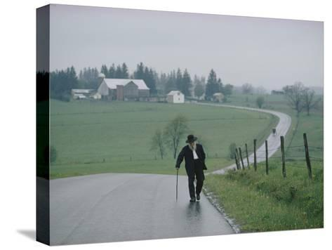An 81 Year Old Amish Man Walks to the Amish Church on Sunday Morning-Robert Madden-Stretched Canvas Print