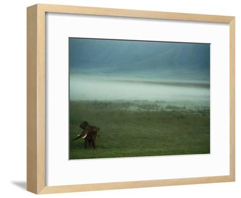 An African Elephant in the Ngorongoro Crater-Chris Johns-Framed Art Print