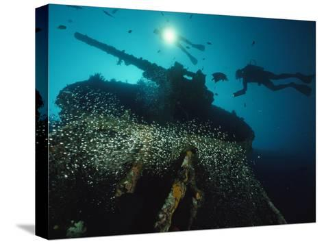 Divers Explore the USS President Coolidge's Forward Guntub-David Doubilet-Stretched Canvas Print