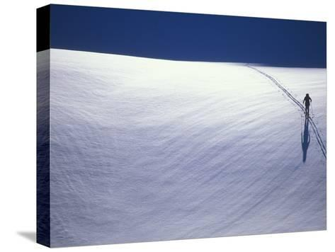 Cross-Country Skiing on a Glacier in Alaska-John Burcham-Stretched Canvas Print