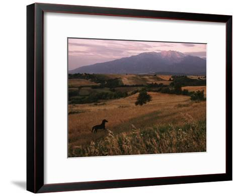 Horse Running Through Fields at the Base of Mount Olympus-James L^ Stanfield-Framed Art Print