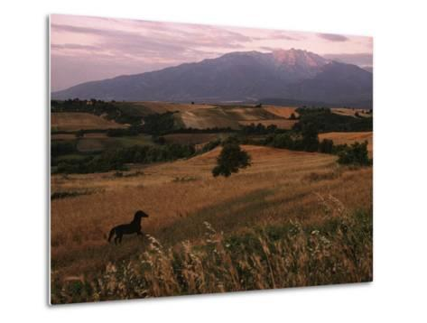 Horse Running Through Fields at the Base of Mount Olympus-James L^ Stanfield-Metal Print