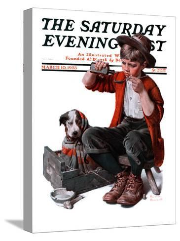 """""""Sick Puppy"""" Saturday Evening Post Cover, March 10,1923-Norman Rockwell-Stretched Canvas Print"""