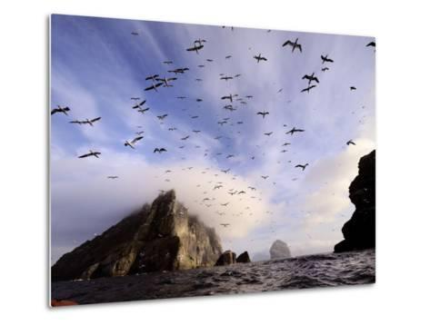Cloud Covers a Sea Bird Rookery High on a Sea Stack Cliff-Jim Richardson-Metal Print