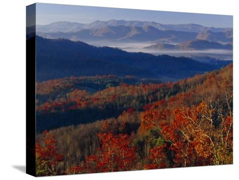 Fog Lying in Mountain Valleys in the Early Morning in Autumn-Raymond Gehman-Stretched Canvas Print