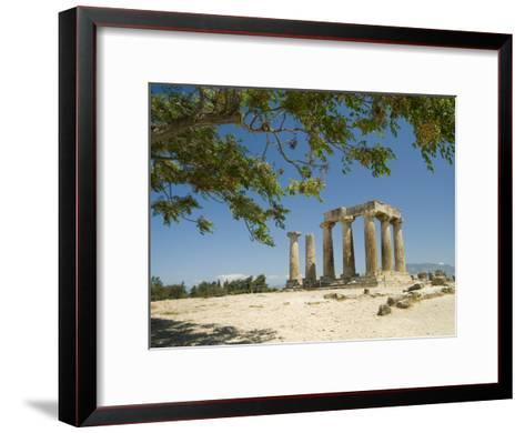 The Doric-Style 550 Bc Temple of Apollo and a Branch of an Olive Tree-Richard Nowitz-Framed Art Print
