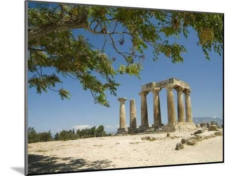 The Doric-Style 550 Bc Temple of Apollo and a Branch of an Olive Tree-Richard Nowitz-Mounted Photographic Print