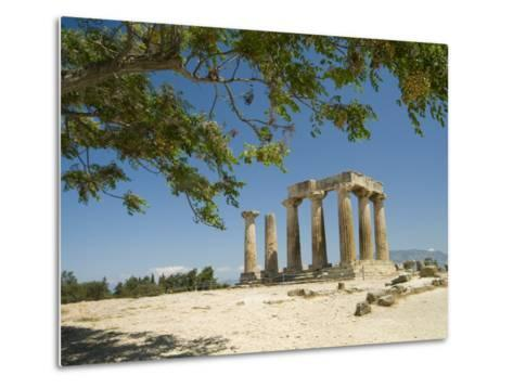 The Doric-Style 550 Bc Temple of Apollo and a Branch of an Olive Tree-Richard Nowitz-Metal Print