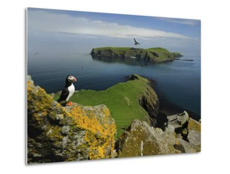 The Shaint Islands are Breeding Grounds for Puffins and Razorbills-Jim Richardson-Metal Print