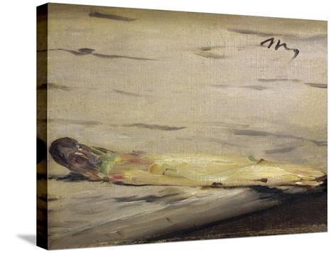 Asparagus (L'Asperge)-Edouard Manet-Stretched Canvas Print