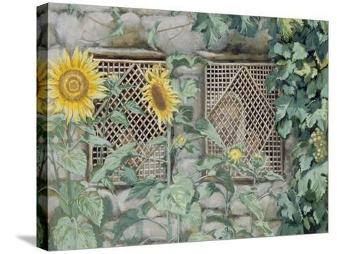 Jesus Looking Through a Lattice with Sunflowers, Illustration for 'The Life of Christ', C.1886-96-James Tissot-Stretched Canvas Print
