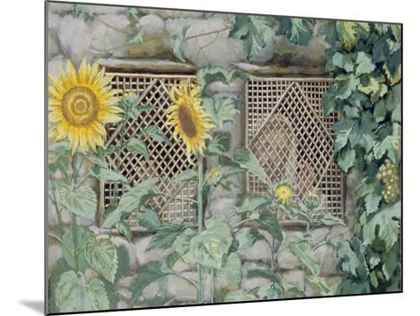 Jesus Looking Through a Lattice with Sunflowers, Illustration for 'The Life of Christ', C.1886-96-James Tissot-Mounted Giclee Print