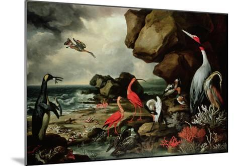 A Penguin, a Pair of Flamingoes, and Other Exotic Birds, Shells, and Coral on the Shoreline-Philip Reinagle-Mounted Giclee Print