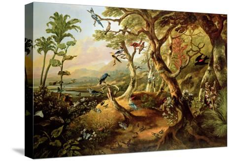 Exotic Birds and Insects Among Trees and Foliage in a Mountainous River Landscape-Philip Reinagle-Stretched Canvas Print