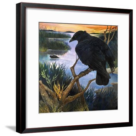 The Crow, Illustration from 'The Black Shadow', by F. St Mars, 1966-G^ W Backhouse-Framed Art Print