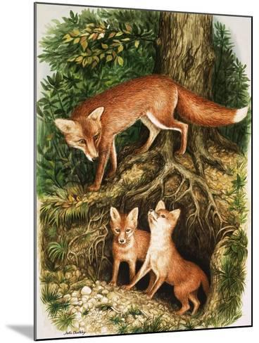 The Fox Family, Illustration from 'Once Upon a Time', 1971-John Chalkley-Mounted Giclee Print