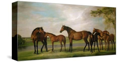 Mares and Foals Disturbed by an Approaching Storm, 1764-66-George Stubbs-Stretched Canvas Print