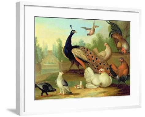 A Peacock, Doves, Chickens and a Jay in a Park-Marmaduke Cradock-Framed Art Print