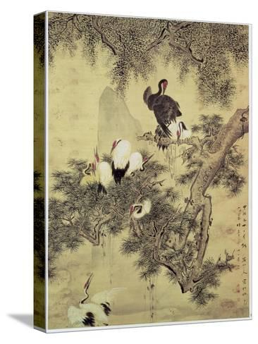 Eight Red-Crested Herons in a Pine Tree, 1754-Hua Yan-Stretched Canvas Print