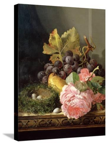Still Life, Roses, Fruit and Bird's Nest-Edward Ladell-Stretched Canvas Print