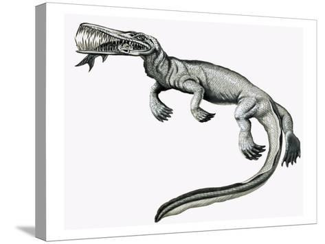 Prehistoric Crocodile Eating a Fish-Helen Haywood-Stretched Canvas Print