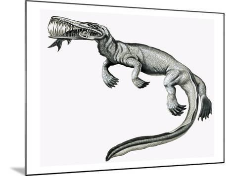 Prehistoric Crocodile Eating a Fish-Helen Haywood-Mounted Giclee Print