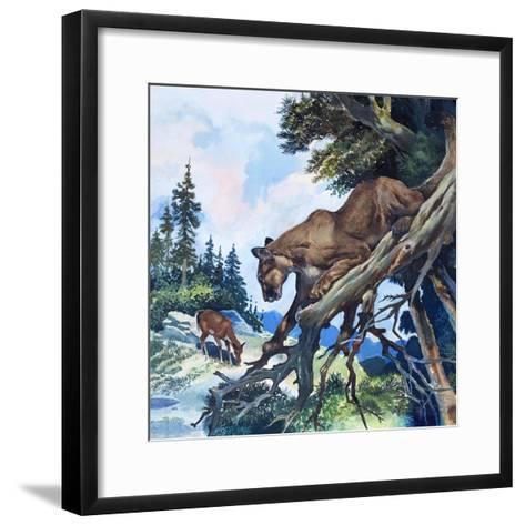 Puma on the Prowl, 1963-G^ W Backhouse-Framed Art Print