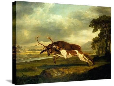 A Hound Attacking a Stag-George Stubbs-Stretched Canvas Print