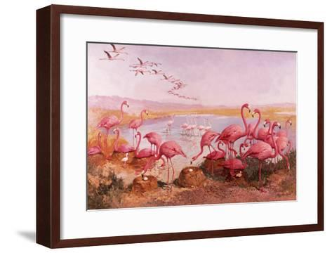 Pink Flamingoes- Syde-Framed Art Print