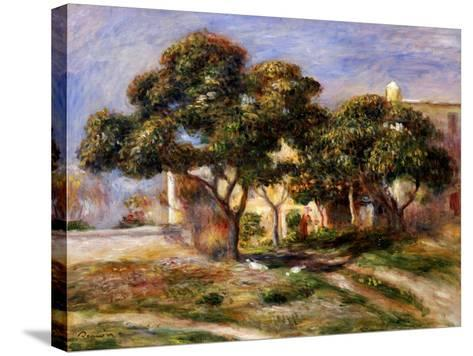 The Medlar Trees-Pierre-Auguste Renoir-Stretched Canvas Print