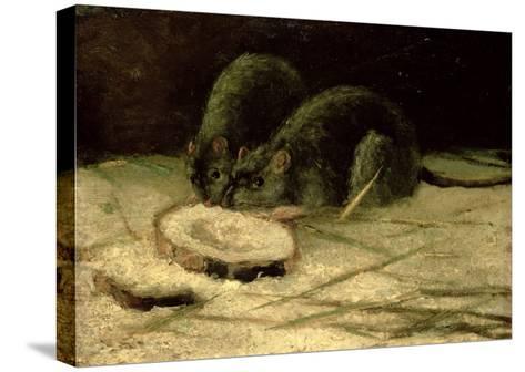 Two Rats, C.1884-Vincent van Gogh-Stretched Canvas Print