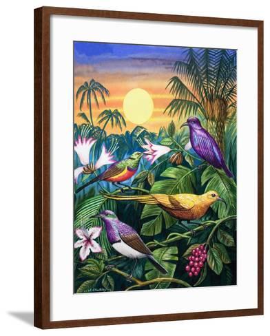 Tropical Sunbirds-John Chalkley-Framed Art Print