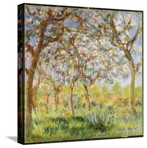 Spring at Giverny-Claude Monet-Stretched Canvas Print