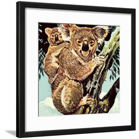 Koala Bear-English School-Framed Art Print