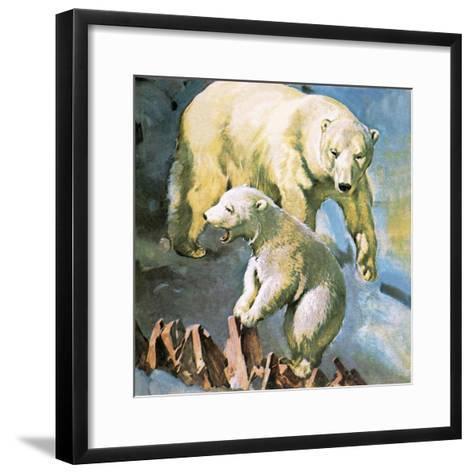 Polar Bear-McConnell-Framed Art Print