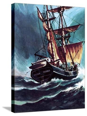 The Seafarer-Wilf Hardy-Stretched Canvas Print