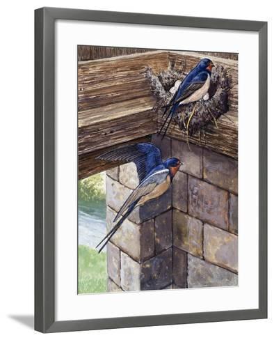 Swallows-English School-Framed Art Print