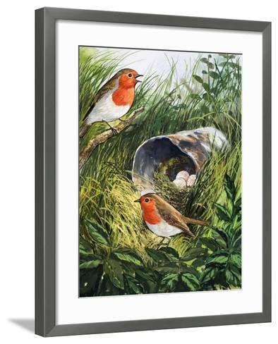 Robins-English School-Framed Art Print