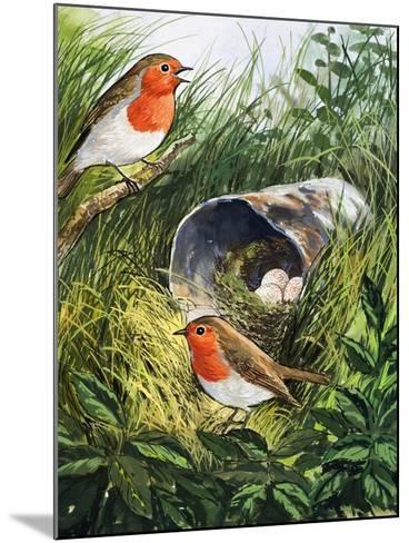 Robins-English School-Mounted Giclee Print