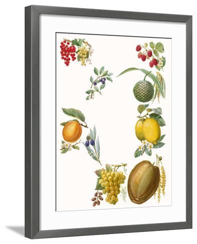 Fruits-English School-Framed Art Print