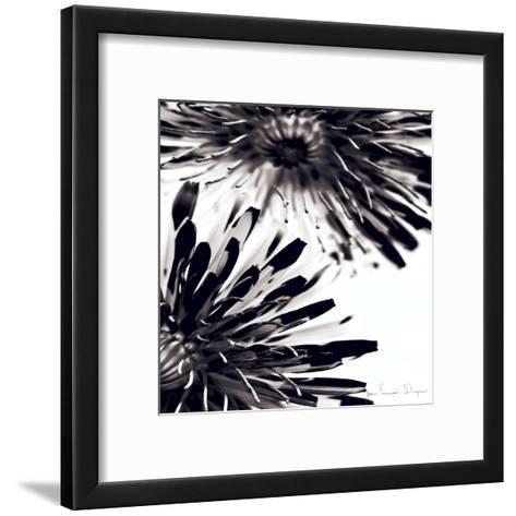 Contrastoflora II-Jean-Fran?ois Dupuis-Framed Art Print