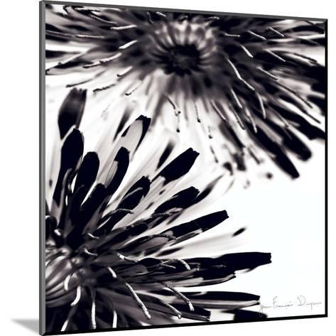 Contrastoflora II-Jean-Fran?ois Dupuis-Mounted Art Print