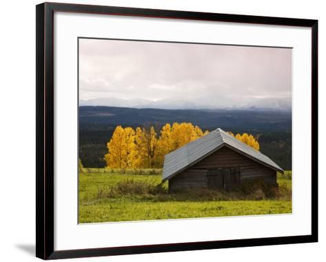 Traditional Wooden Barn, Yellow Aspens and Fjells with First Snow in Autumn-Christer Fredriksson-Framed Art Print