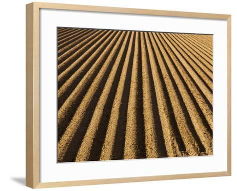 Ploughed Field-Douglas Steakley-Framed Art Print