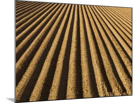 Ploughed Field-Douglas Steakley-Mounted Photographic Print