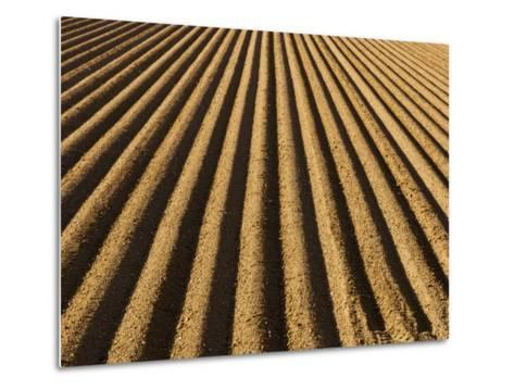 Ploughed Field-Douglas Steakley-Metal Print