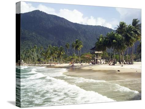 Waves Roll onto Palm Lined Beach-Dan Gair-Stretched Canvas Print