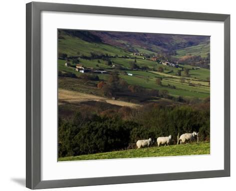 Fields and Farm, North York Moors National Park-Doug McKinlay-Framed Art Print