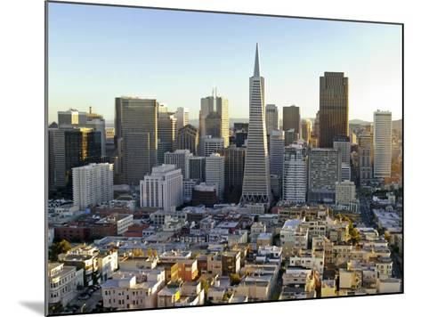 Transamerica Pyramid Building and Downtown from Top of Coit Tower-Emily Riddell-Mounted Photographic Print